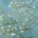لوحه أزهار اللوز لفان جوخ