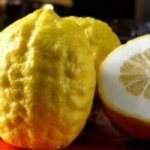 فوائد فاكهة الترنج للحامل