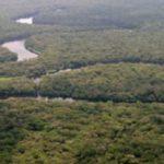ثالث أكبر نهر في العالم