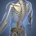 أنواع سرطان العظام